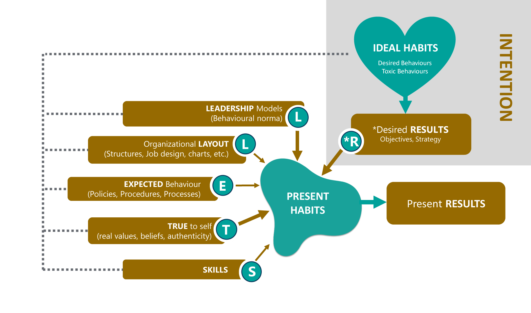 Stell*R leadership model team coaching framework