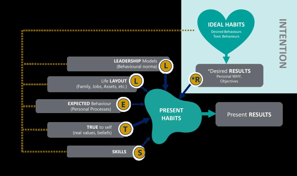 Stell*R Leadership Model Individual Coaching Framework